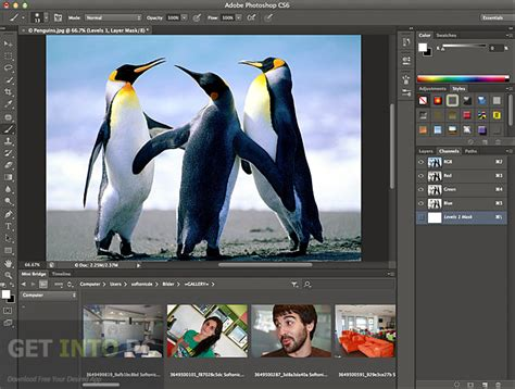photoshop software free download for pc windows xp full version adobe photoshop cs6 extended setup free download