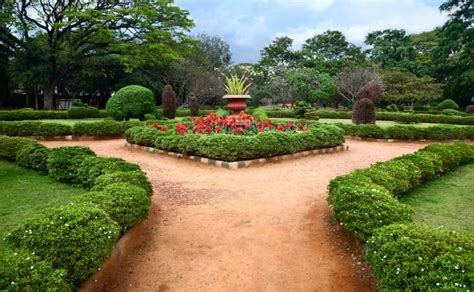 Green Lifestyle Ugaoo Botanical Gardens India