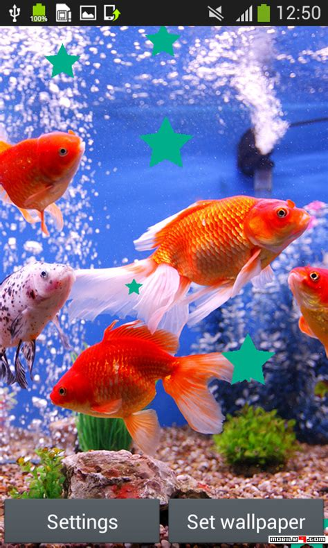 Fish Live Wallpaper Mobile9 by Aquarium Live Wallpapers Android Live Wallpapers