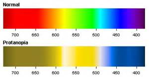 protan color blindness protanopia green color blindness colblindor