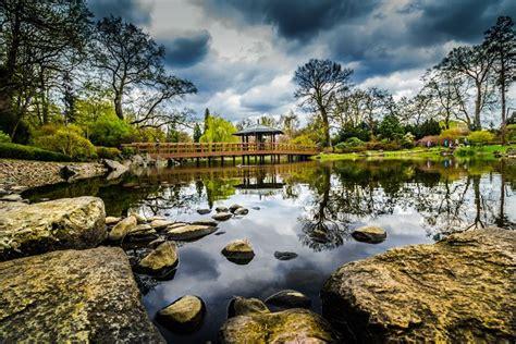 stagno giardino stagno progettazione giardino laghetto giardino