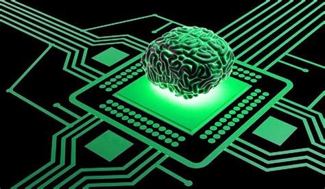 the next 3d thing on a chip is the human brain