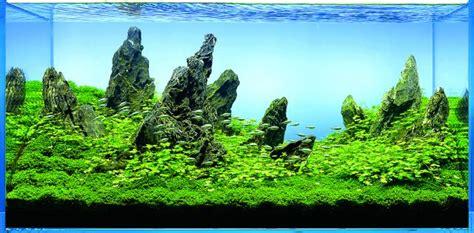 ada aquascape beginnen wir mit a w90 aquascaping wiki