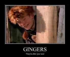 Funny Ginger Meme - ginger jokes on tumblr