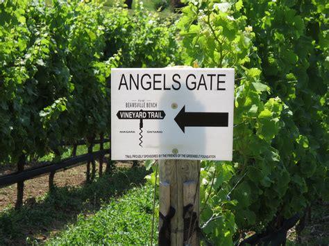 beamsville bench wineries beamsville bench wineries 28 images vineland jordan beamsville bench wine tour