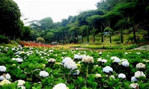 pemandangan taman bunga  indah  selecta kota batublog bunga