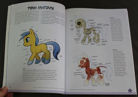how to draw books pdf pony drawing book 183 of lindsay and jared