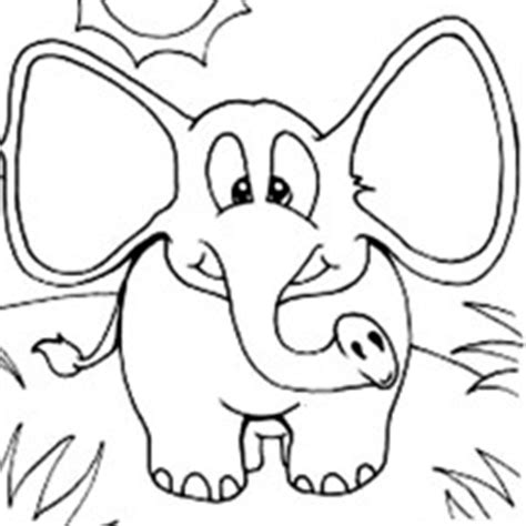 elephant ears coloring page elephant netart