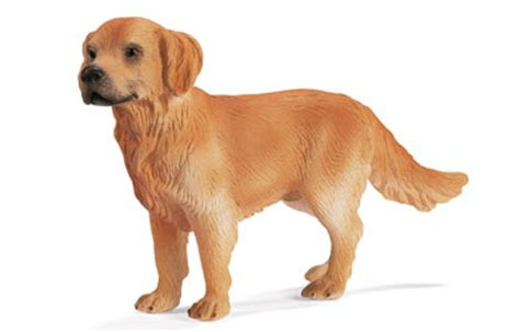 schleich golden retriever schleich golden retriever soft review compare prices buy