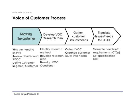 voice of the customer template define phase voice of customer