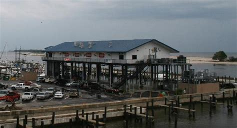 Harbor House Seafood by View From Hardrock Parking Garage Picture Of Mcelroy S