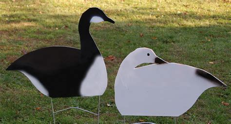 How to Enhance Your Goose Spread with DIY Coroplast Decoys ... Goose Hunting Rifle