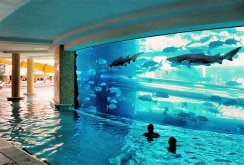 awesome pools 11 most beautiful swimming pools you have ever seen