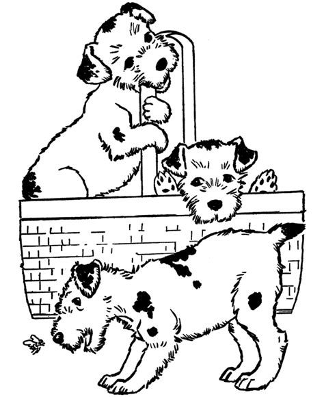 dog coloring pages you can print dog coloring pages printable puppies in a basket coloring