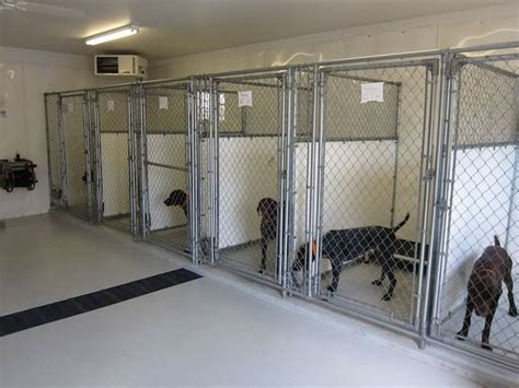 garage kennel kennel sharp shooter s kennel pets boarding and salon