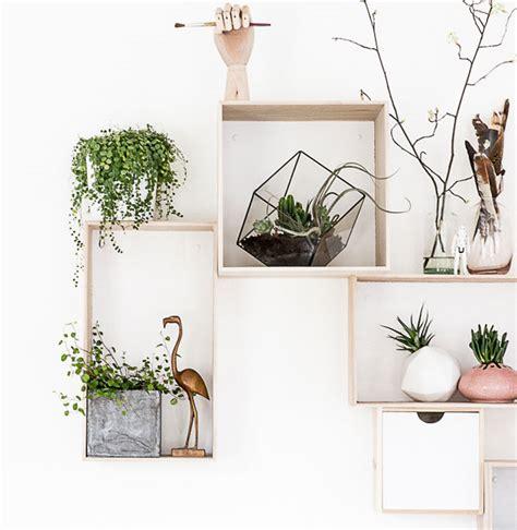 Planten In Huis Trends by Jungle Is De Trend Nu Shop Hier
