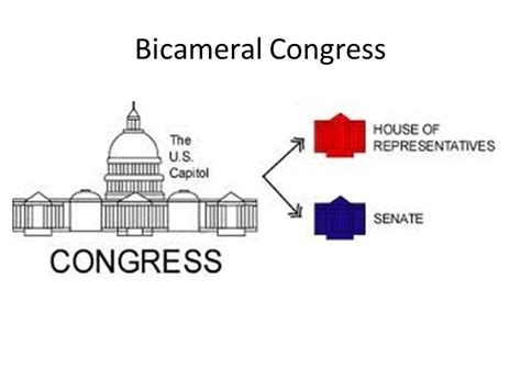 Why Are There Two Houses Of Congress 28 Images Amerika