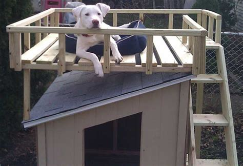 how to build a house how to build a dog house with sun deck at the home depot