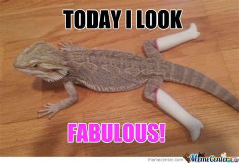 Lizard Meme Hehehe - related keywords suggestions for lizard meme