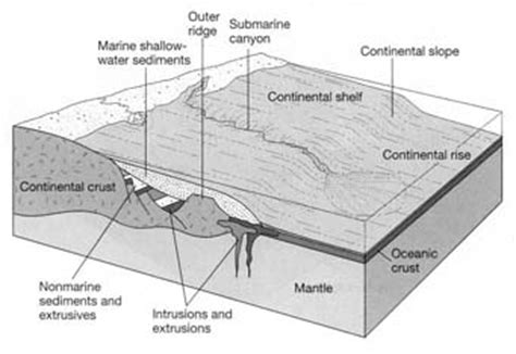 section 20 notice explained geology earth science surface features plate tectonics