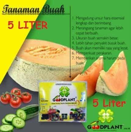 Pupuk Ab Mix Goodplant jual goodplant nutrisi ab mix buah 5 liter bibit