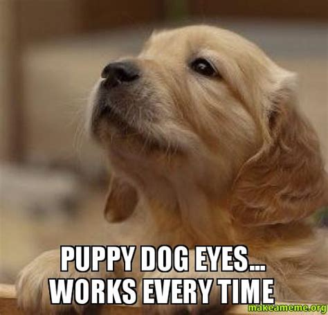 Dog Face Meme - puppy dog eyes meme