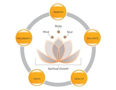 lotus symbol meaning best 25 meaning of lotus flower ideas on