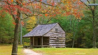 cabin christmas decor