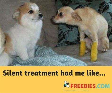 Silent Treatment Meme - my answer to the silent treatment
