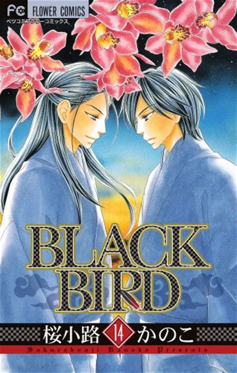 Black Bird Vol 13 vo black bird jp vol 14 sakurak 212 ji kanoko