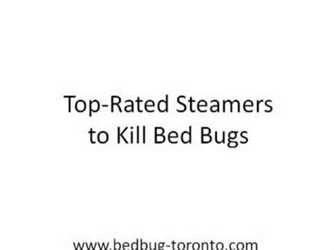 steamers that kill bed bugs top rated steamers to kill bed bugs youtube