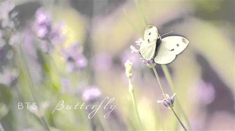 bts butterfly bts butterfly cover youtube