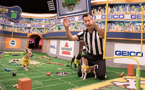 puppy bowl referee how the puppy bowl is filmed and how it s expanding its mission reality blurred