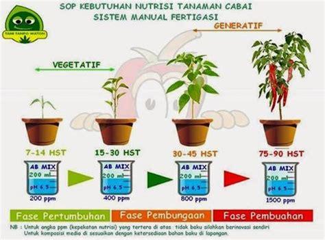 cara membuat vitamin hidroponik cara membuat nutrisi hidroponik sayuran griya hidroponikku