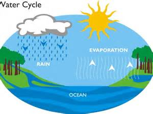 what does water mean water cycle by 013968