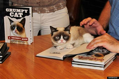 cat picture book grumpy cat does not look impressed at book signing in los