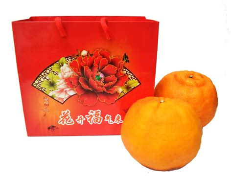 new year gift oranges cny oranges think fresh fresh fruits wholesaler