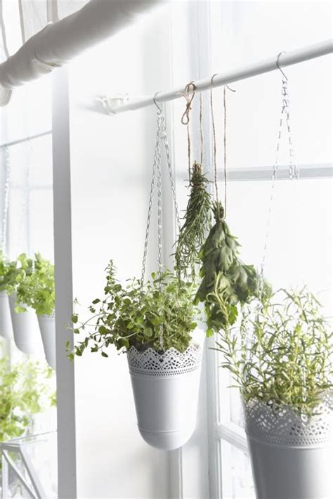wall planters indoor ikea 24 ways to hang plants on the wall andrea s notebook