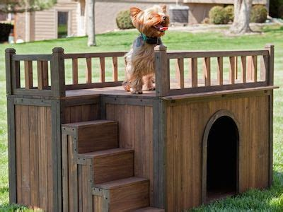unusual dog houses unique dog houses designs