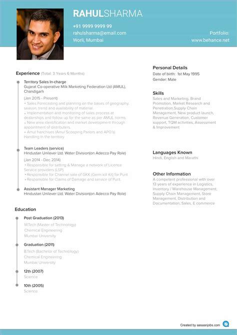 professional resume cv template resume templates