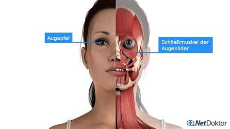 wann sind lymphknoten geschwollen geschwollene augen ursachen tipps und hausmittel netdoktor
