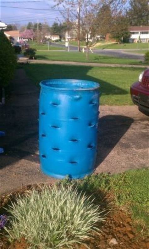 Strawberry Barrel Planter by Plastic Barrel Strawberry Planter 55 Gallon Blue Barrel