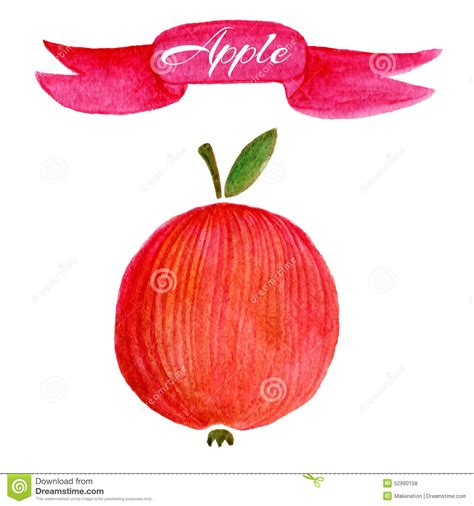 design apple fruit red apple logo design template food or fruit icon stock