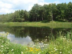 pond supplies in rochester new york by national pond service