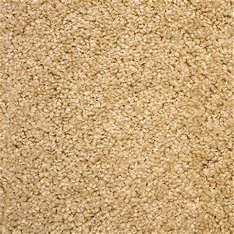 Phenix Flooring by Buy Phenix Seaside Carpet