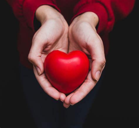 Buku Patofisiologi Dasar Keperawatan Penyakit Jantung Koroner aterosklerosis h2