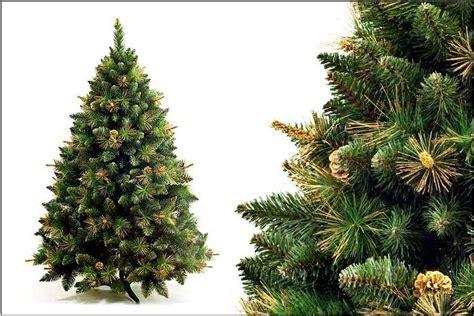 best 28 kiefer als weihnachtsbaum duden weih 173