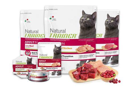 alimenti per gatti sterilizzati l alimentazione gatto cose di casa