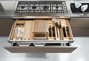 Kitchen Cabinet Organization Products San Diego Contemporary Kitchen Design And Cabinets Contemporary Kitchen Drawer Organizers