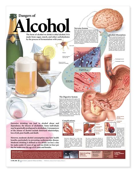 Dangers Of Sugar Detox by Dangers Of Poster Anatomical Chart Company